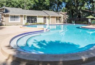 Laurel Oaks Apartments in Tampa, FL